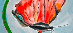 Birgitt Gill butterfly